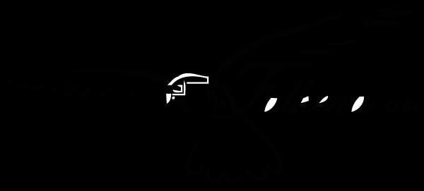 logo Falkena c.s